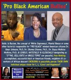 Dr. Umar Johnson Ph.D, Dr. Boyce Watkins Ph.D, Dr. Shonna Etienne, BULLIES.jpg